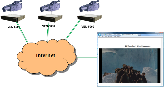 Web Based Remote Video Monitoring